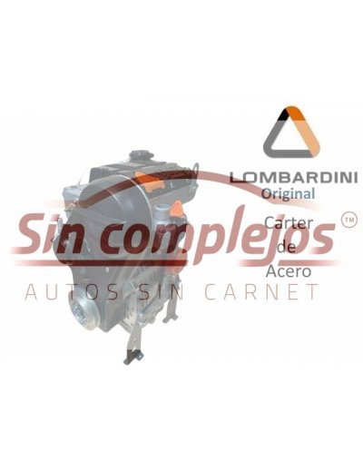 MOTOR LOMBARDINI LDW502 CARTER DE ACERO
